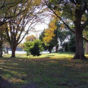 公園は自由に歩くところ