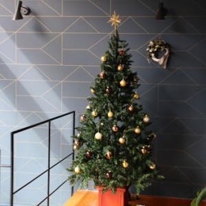 【クリスマス準備その2】我が家のツリーたち