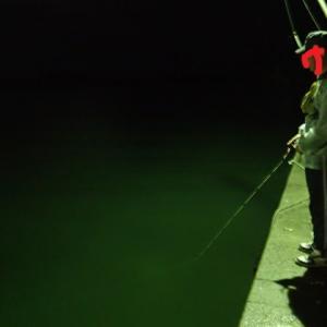 海釣りday1 day2と頭痛の記事