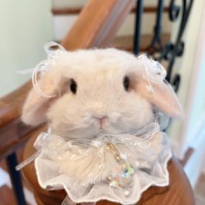 台湾へお嫁入り♪羊毛エコファーバッグチャーム