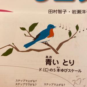 鳥が鳴く時