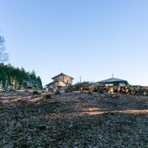 雑木林を伐採した土地