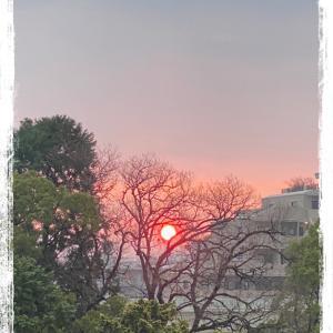 ベランダから日の出を眺める☆