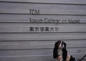 東京音大の新キャンパス