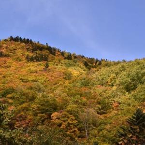 札幌ダムの紅葉