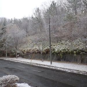 卯月の雪…