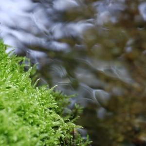 不思議で神秘的…神が創りし水模様
