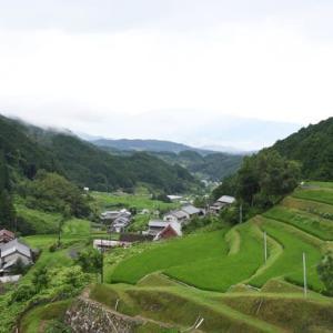 明日香村の棚田を見る!
