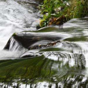 水の流れは不思議!?