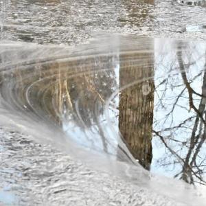 不思議な川面の模様