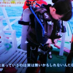 セブンルール水中写真家高橋怜子は今を大事にする人生を歩む