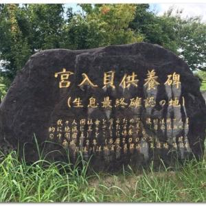 何だコレ!ミステリーSP115年かかった日本住血吸虫との闘い!