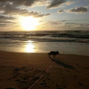 日本海の夕陽@湯野浜温泉in山形
