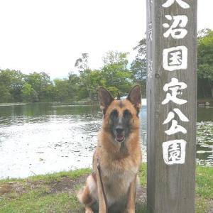 台風接近で大雨_知床へ(3)