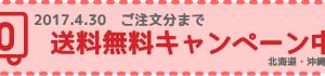 送料無料キャンペーンのお知らせ!