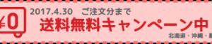 送料無料キャンペーン実施中!(4/30ご注文分まで)