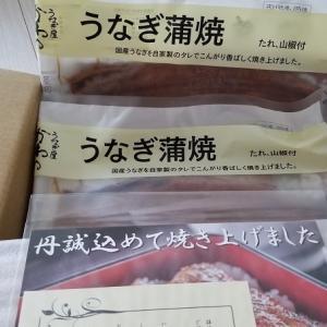 [ふるさと納税]和歌山県有田市からふるさと納税のお礼の品が届きました♪