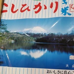 [ふるさと納税]鳥取県米子市からふるさと納税のお礼の品が届きました♪11月には優待が届くので5kgにしました♪