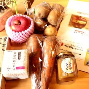 「奇跡のリンゴ」で有名な木村さんのリンゴ 自由が丘にお店ができました!