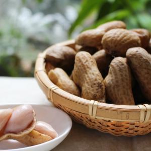 不老長寿の至福ピーナッツ「おおまさり」の季節がやってきました\(^o^)/