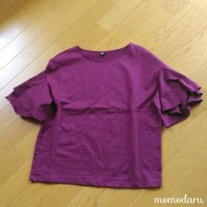 【2019秋】お役御免、使い切った服を処分。