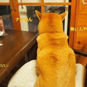 Go To ホテル旬香 大山リゾート!