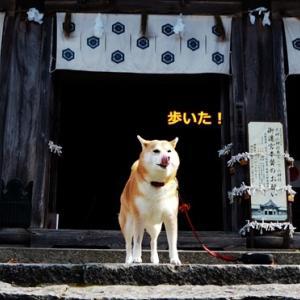 Go To 鳥取観光編。