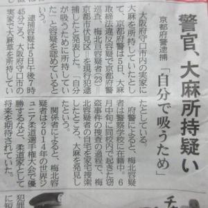 世界で解禁相次ぐ『大麻』タイの最新研究事情!日本の今後は?