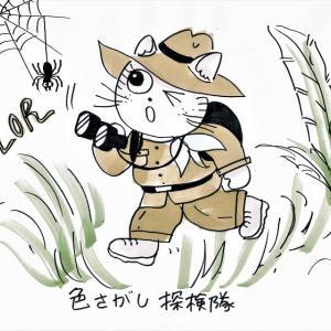 かんたんテーブルコーディネートレッスン☆トラ美せんせい⑥「色(2)」