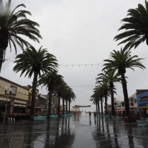 雨 ハモサビーチ 1