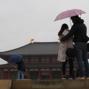 小雨の奈良 2