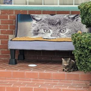 御近所猫 130
