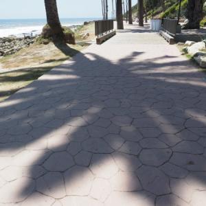 ロイヤルパームビーチ 2