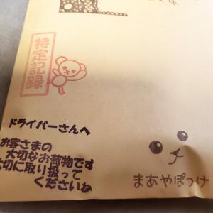 定形外郵便に特定記録をつけて【朝、発送しましたよ】