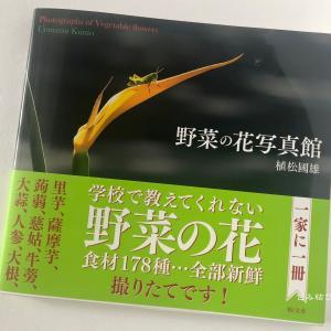 《櫻撫子文庫》〜「野菜の花写真館」のご紹介〜