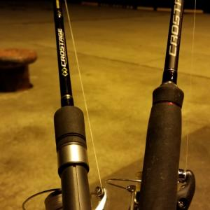 初釣り 釣れましたよー。