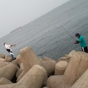 本日は和歌山 青岸に来ております