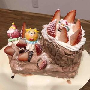 クリスマスケーキ2019年♬子供たちがデコレーション。