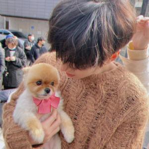 今日のIGの場所/私は犬になりたい!&イ・ミンホの魅力は身長?&MetroBestKDrama♪