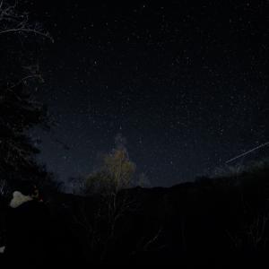 オリオン座流星群が極大に