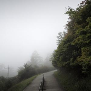 狼を連れて霧の三峯神社