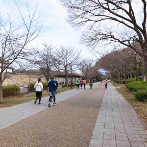 ランナー率高めの大阪城を走る。夜はたこパ
