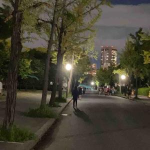 8月の走行距離と夜の大阪城RUN