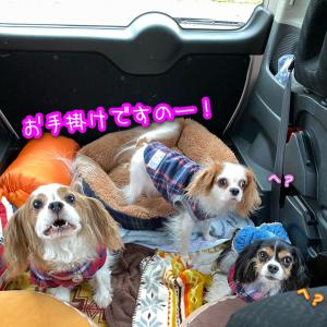 岡山へレッツゴー!