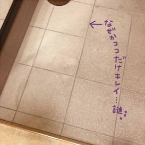 続・玄関のたたき掃除
