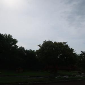 湿原が草原になっているのか、コッタロ湿原展望台からの眺めがショック (2021/8/30)