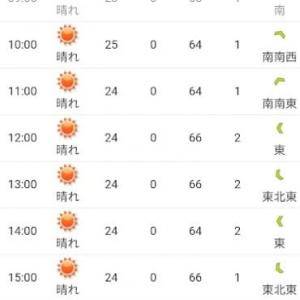 今日の天気は晴れだ、こういう日こそ積丹ブルーを見に行こう (2021/9/11)