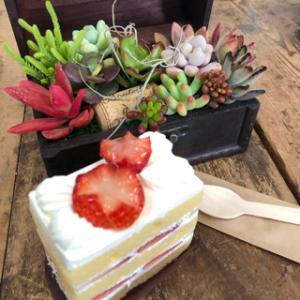 季季さんのケーキ