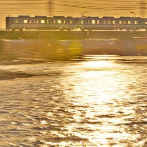 柳瀬川の夕景を行く31614F+31414F