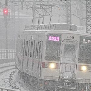 雪の11641F+11445F